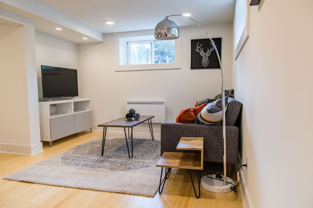 The living area has a pull-out sleeper couch and a Roku TV with Sling and HBO.