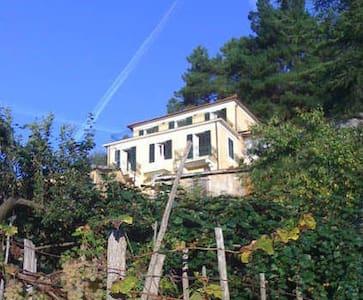 The Swan House near Cinqueterre & Tuscany - Carro