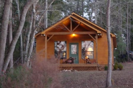 GA LAKEFRONT CABIN W dock & RV plug &PET Friendly! - Fort Gaines - Blockhütte
