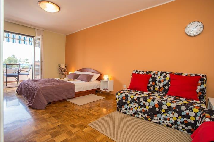 Bedroom-living room