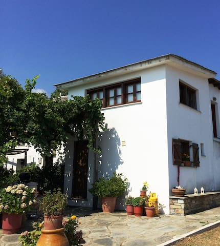 Tranquil country house in Tsagarada - Tsagkarada