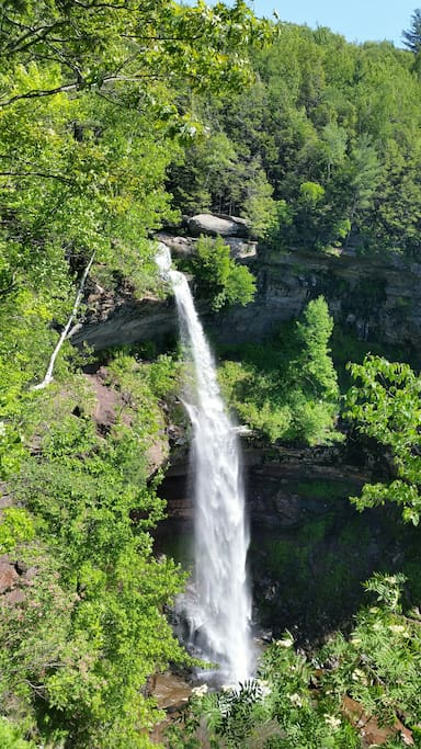 10 minutes away from Kaaterskill Falls.  Excellent hiking.   Also minutes away from North Lake in Haines Falls.