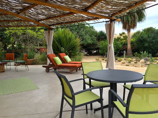 Semi-circle entry patio, cactus garden and places to lounge and dine!