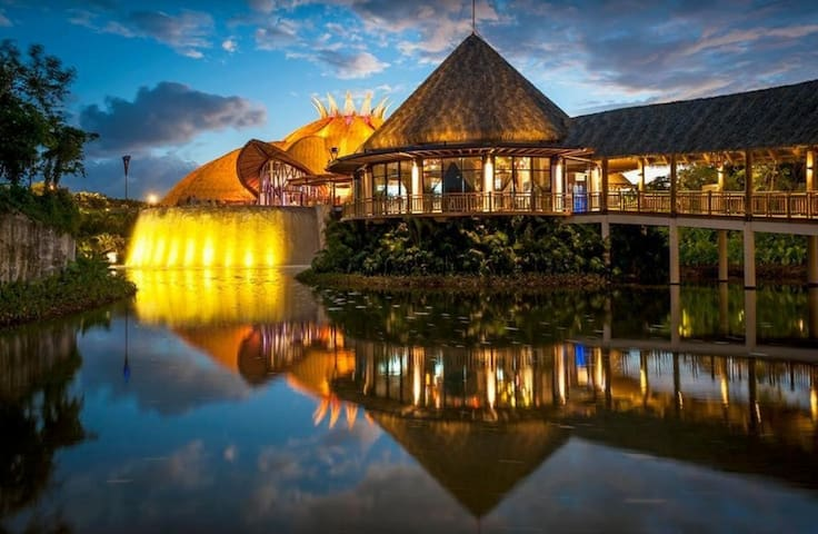 A Jungle Paradise Built for Luxury ~ VIDANTA Riviera Maya 11/23/19 to 11/30/19