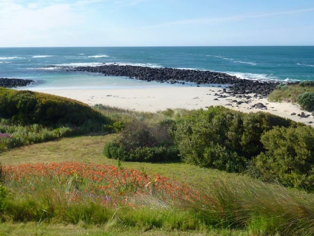 Flippers Cove 1 - Port Fairy - Hus