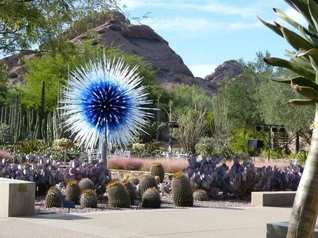 Desert Botanical Garden 20 minutes away