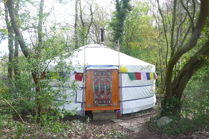 Mongoolse Yurt - Boijl - Tenda