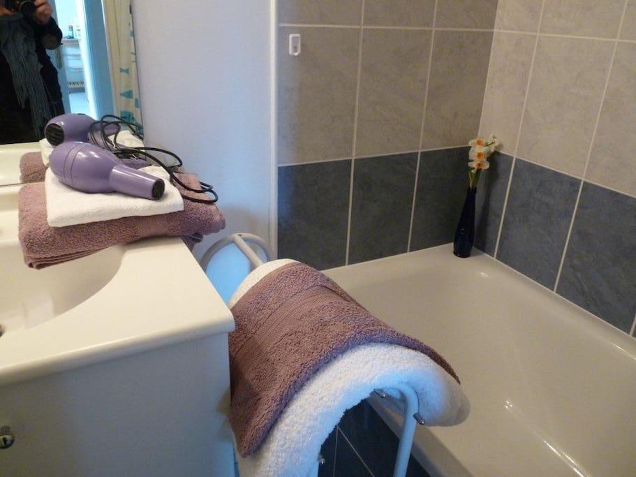 salle de bain avec baignoire douche et lavabo