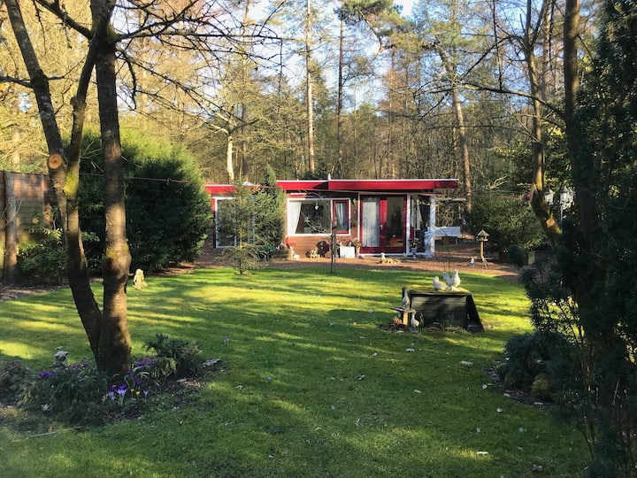 Holiday home close to Amsterdam!