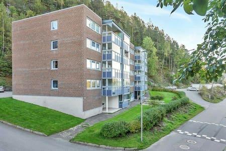 Good space appartment vennelsa - Vennesla - 公寓