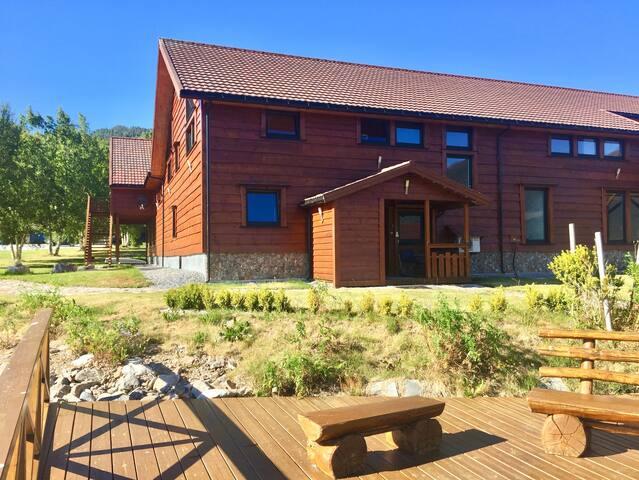 Eriks Viking Lodge- yellow apartment