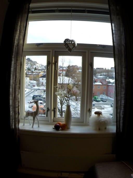 Store vinduer med godt lysinnslipp og fin utsikt over nabolaget.