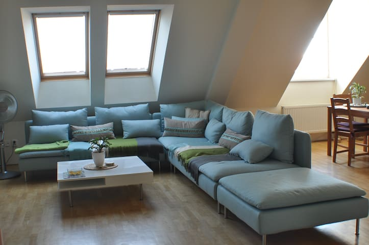 Beautiful sunny flat with 2 cats - Prag - Wohnung