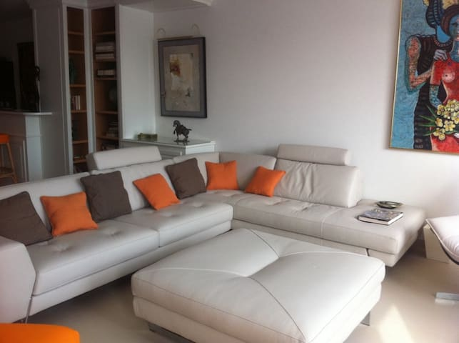 Les Hirondelles Luxury Apartment - Tannay/Coppet - Apartemen