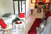Salon pièce à vitre agréable  avec canapé-lit + canapé, cuisine américaine