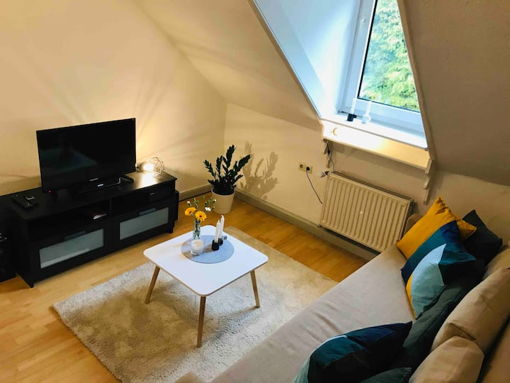 Cosy Apartment downtown, close to the TrAinstation