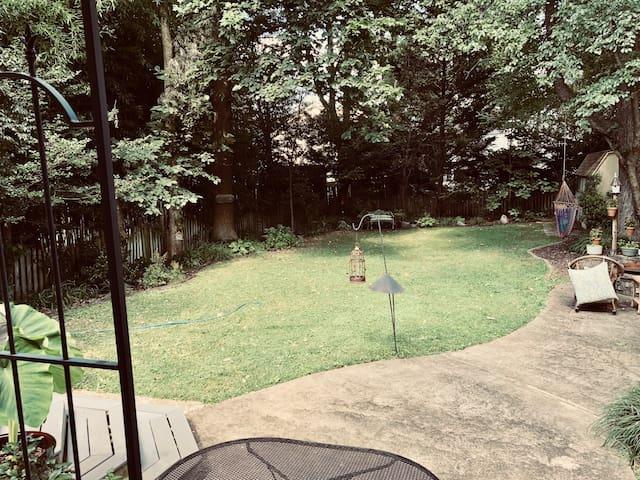Backyard for relaxing