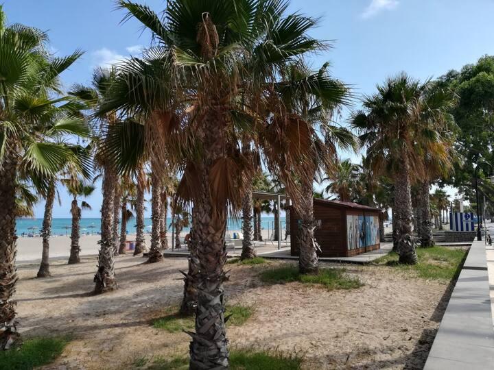 Apartamento espacioso y  en segunda linea de playa