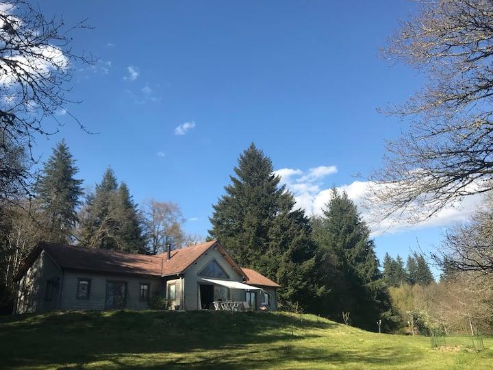 Grande maison en bois pleine nature