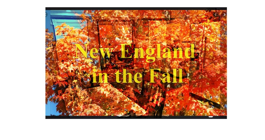 Fall in love with Portsmouth New Hampshire