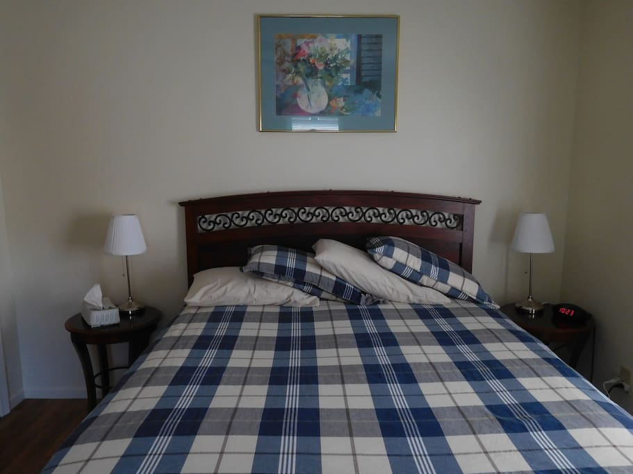 Cozy queen size bed, two night stands, two sitting chairs, TV, walk-in closet, dresser.