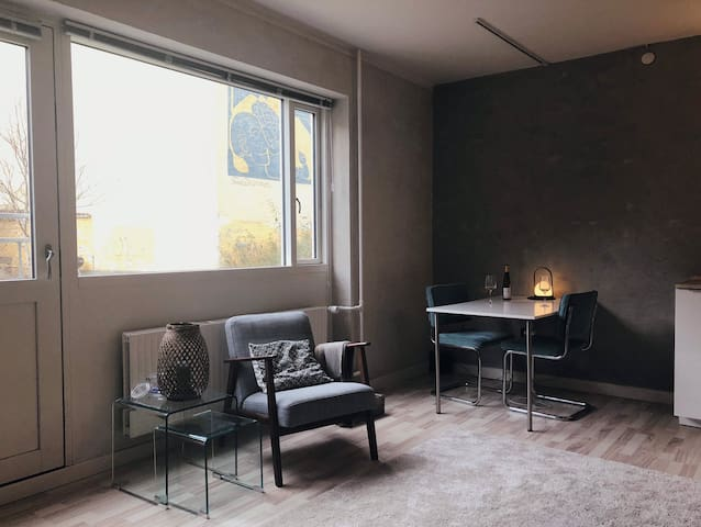Nice and cosy studio apartment