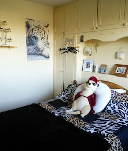 Comfy double bed for 1 or 2 - Carlow - Casa