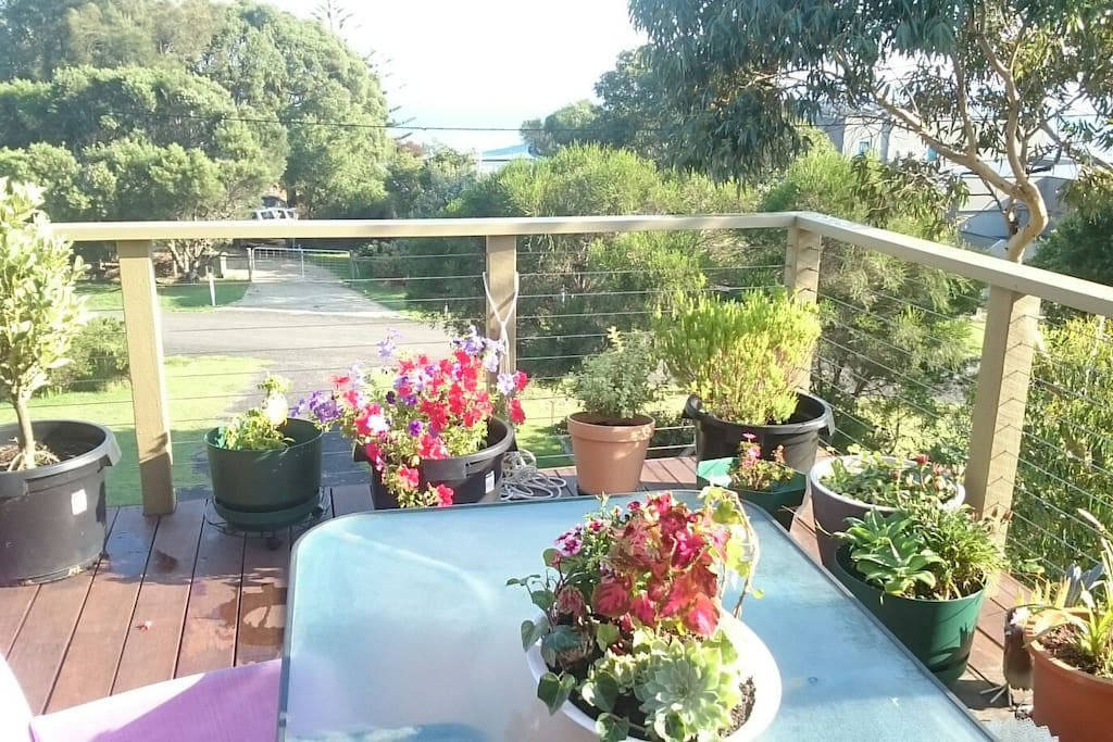 Deck garden looking out over Western Port Bay