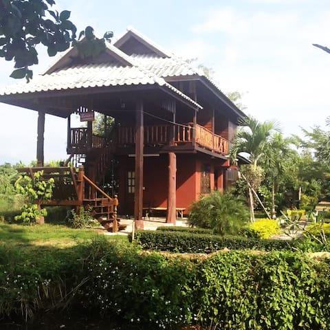 Teak wood house in a longan garden (Room 5)