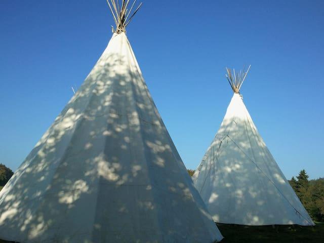 Tipis indiens et aventure sur la paille 28.--/pers