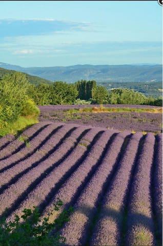 L'Esperouze - Chantemerle-lès-Grignan