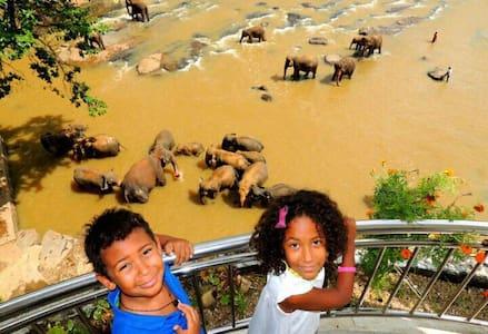 Room with Elephant Bath View - Rambukkana