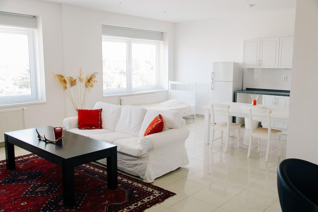 Living room / Kitchen / Dining Room