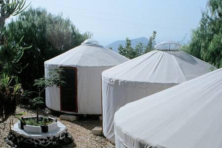 Yurta en la naturaleza-3  (Desayuno incluido)