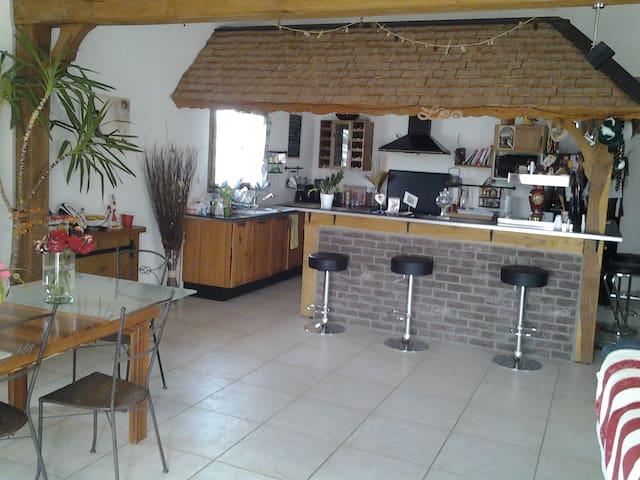 Jolie Maison entre lac et champagne - Chalette-sur-Voire