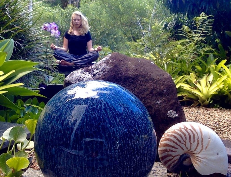 meditate in the rainforest gardens