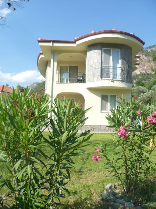 Villa Mimosa 8 is set behind an olive grove. It is surrounded by oleanders, green orange bushes and has its own little fig tree at the bottom of the stairs.