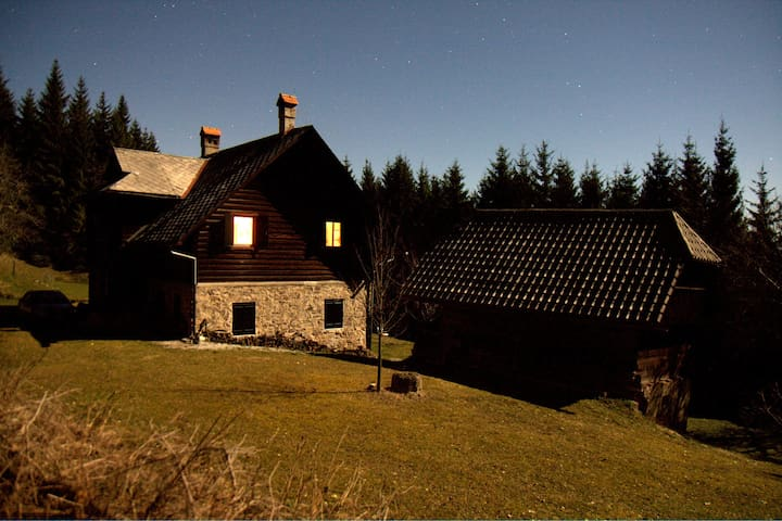 Unique mountain forest house, place of wonder - Zgornja Rečica