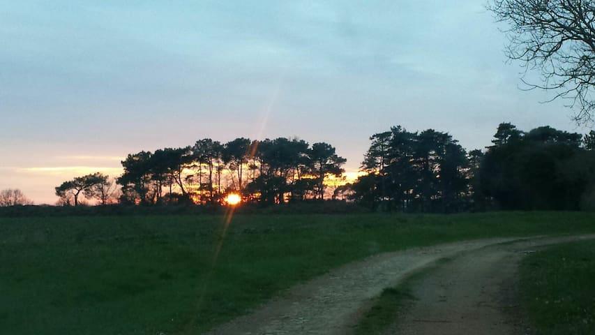 Camping ecologique en forêt, vrai literie! - Talmont-Saint-Hilaire - Cabana