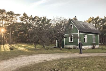 Gotländsk idyll i Visby - Visby