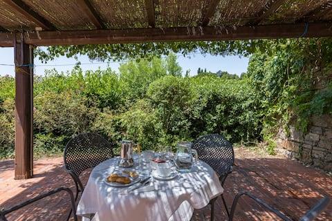 Relaxing holiday, 5 apts +pool among the vineyards
