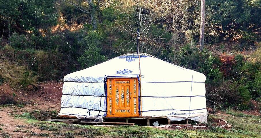 Yurta Mongol en la Montaña