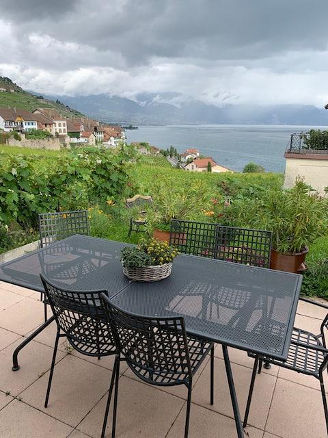 Suite in Lavaux mit schöner Aussicht auf dem See
