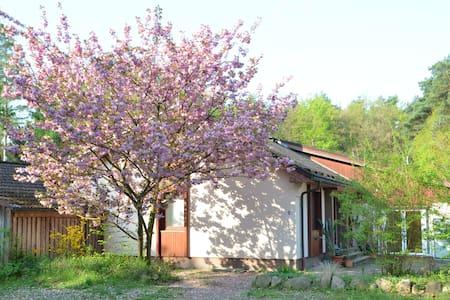 """Ferienwohnung  am Wald """"Romantik""""mit Terrasse - Mölln"""