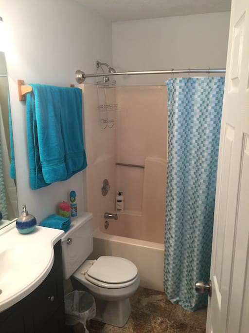 Private bath with all the amenities!