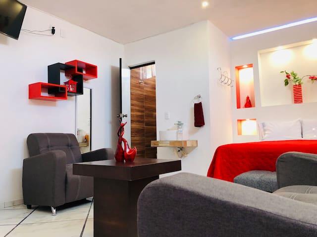 Departamento Amueblado Matehuala 4 habitaciones