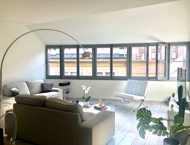 Luxury appartment in the heart of Geneva Old Town