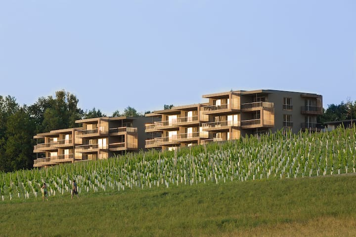 Wine & Living Apartments by LOISIUM - Ehrenhausen - Huoneisto