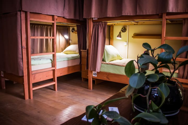 CITY PARK HOSTEL_Room for 12 (women only)_1 bed