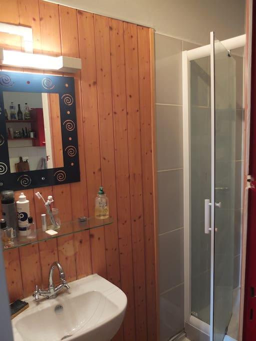 Salle de bain équipée, douche avec jet réglable, récemment refaite.
